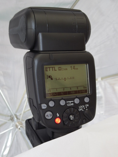 Canon Speedlite 600EX on a Hähnel Tuff TTL receiver inside a Hylow softbox