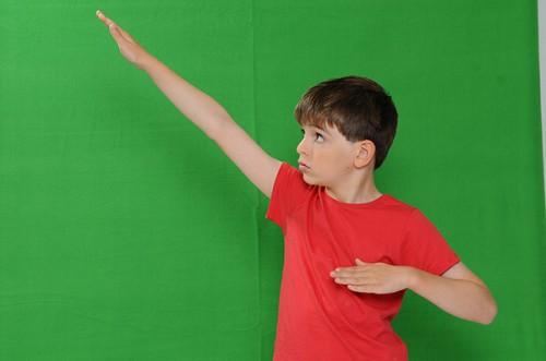 Green Screen X-Drop backdrop sample photo 4