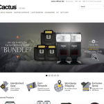 Cactus Store Preview