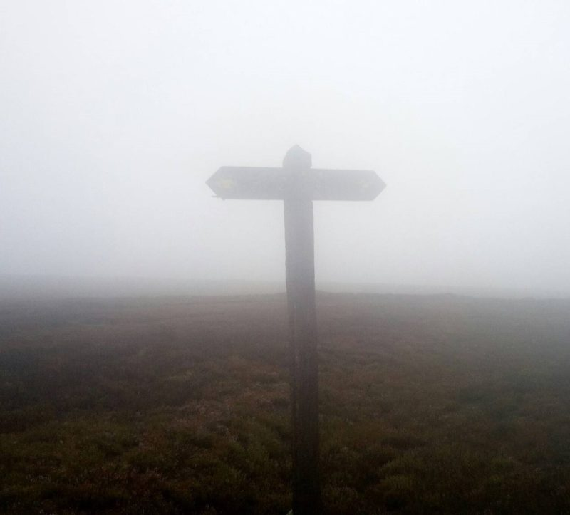 A signpost in the fog
