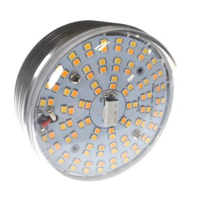 Savage 50W bi-color LED bulb